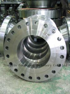 Detailed Info for Special Forging Flange pictures & photos