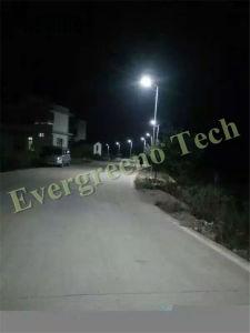 Solar Street Light for Palistan Market pictures & photos