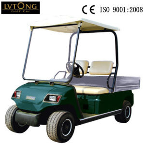 2 Seaters Electric Golf Car with Carogo Box pictures & photos