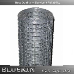 Cheap Hot DIP Galvanized Wire Mesh Fence with Good Quality