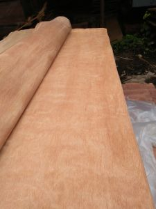 Gurjan/Keruing Veneer with Big Quantity pictures & photos