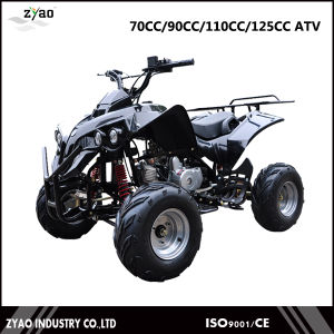2016 off Road ATV 110cc/125cc Quad ATV for Sale Dune Buggy for Sale China ATV 4wheels Quad Factory pictures & photos