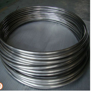 Inox SUS310 Ss Bright Annealed Stainless Steel Coiled Tube pictures & photos