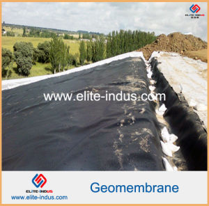 Glossy Polyethylene One Side Black One Side Green HDPE Geomembrane pictures & photos