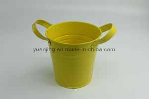 New Style Home Decoration Flower Bucket with Handle