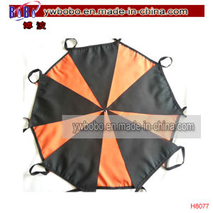 Carnival Birthday Halloween Party Fabric Bunting Decoration Home Decor (H8077) pictures & photos