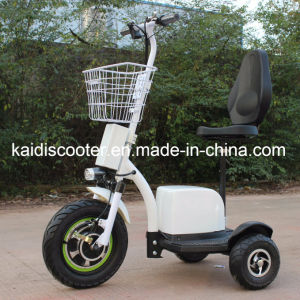 3 Wheels Electric Motorcycle Mobility Sightseeing Vehicle 500W Ce Ginger pictures & photos
