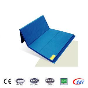 Hottest Folding Foam 5cm Gymnastics Crash Landing Mats pictures & photos