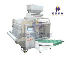 Multi Lane Washing Powder Filling and Packing Machine