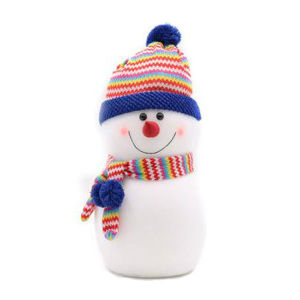 Lovely Christmas Snowman with a Hat and Scarf pictures & photos