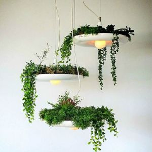 Creative Plants Pendant Lights for Home Decoration (GD-H609-1) pictures & photos