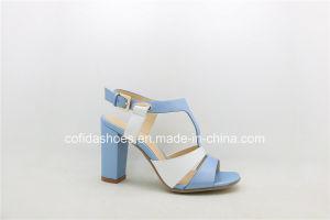 Fashion Chunky Heel Women Sandals for Elegant Ladies pictures & photos