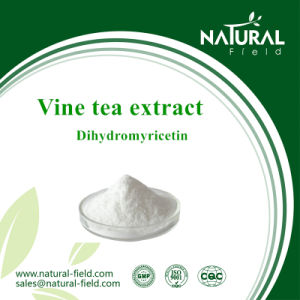 Pure Natural Plant Extract Vine Tea Dihydromyricetin pictures & photos
