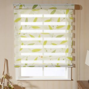 Patterned Zebra Jacquard Vision Blinds Roller Shade pictures & photos