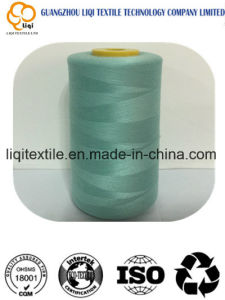 100% Polyester Rayon Embroidery Thread pictures & photos