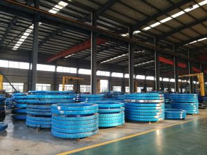 Hot Sale ISO Certificated Tadano Crane TM-Z300 Slewing Bearing pictures & photos