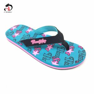 Beautiful Style Flip Flop for Lady pictures & photos