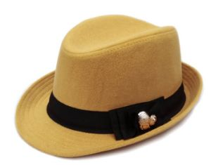 Felt Dressing Fedora Hat pictures & photos
