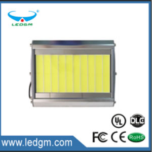 Newest High Quality IP65 LED Flood Light - Series COB for Outdoor pictures & photos
