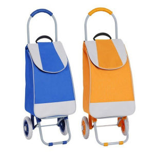Funky 2 Wheel Collapsible Grocery Bag Cart for Super Market pictures & photos