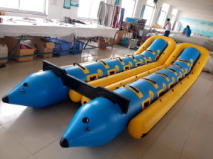 Banana Boat with Two Tubes (FWS-B8P) pictures & photos