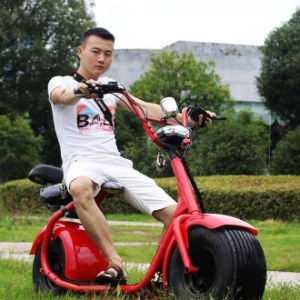 Fat Tires Motorcycle 60V/12.5 Ah Hight Speed Electric Motorcycle pictures & photos