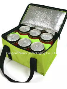 Promotional Custom Portable Food Cooler Bag (BG2058) pictures & photos