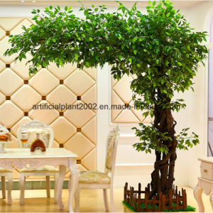 Fashion Artificial Banyan Garden Decoration Ficus Trees pictures & photos