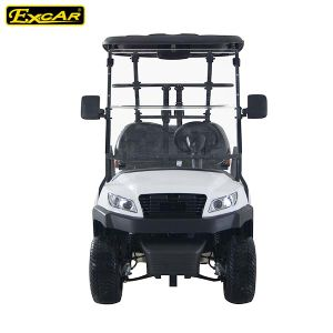 Hot Sale 48V Alum Chassis 2 Seater Electric Golf Car pictures & photos
