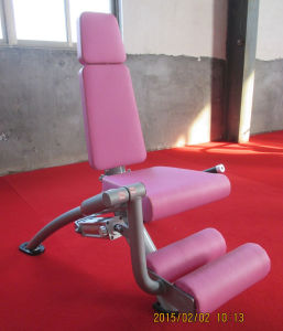 Hydraulic Circuit Training Equipment / Leg Extension & Leg Curl (SH2-05) pictures & photos
