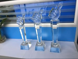 Logo Engraving Crystal Trophy Crystal Award pictures & photos