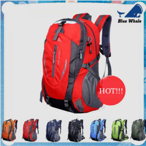 Leisure Computer Bag Men/Women Shoulder Bag Backpack Schoolbag Lowest Network pictures & photos