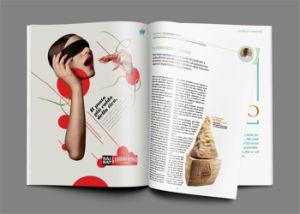 Fashion Magazine Custom Magazine Printing for Publishing House pictures & photos