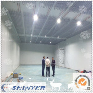 PU Sandwich Panel for Cold Storage Room/Freezer Room pictures & photos