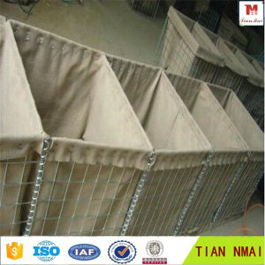 Welded Gabion Box, Hesco Bastion Wall pictures & photos