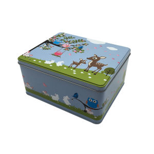 Rectangle Shape Tin Box Wholesale Tin Container Packaging Box pictures & photos