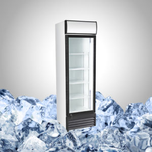 Upright Single Glass Door Showcase Refrigerator pictures & photos