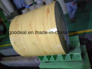 Print Prepainted Steel Coils PPGI From Shandong Yehui Factory pictures & photos