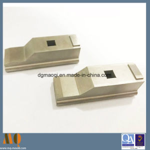 Precision Wire Burn Mould Components (MQ2170) pictures & photos