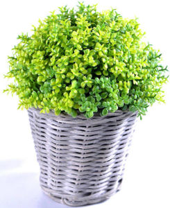Kinds of Artificial Vivid Plants in The Rattan Basket for Outdoor /Indoor Decoration pictures & photos