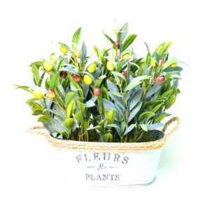 Artificial Plant of Olive in Tin Planter with Decorative Hemp Rope for Decoration in Home/Office