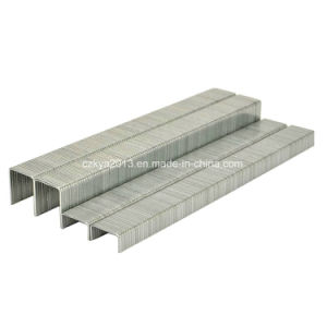 Pneumatic Galvanized 84 Series Staples pictures & photos