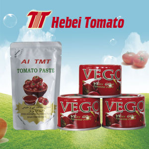 Canned and Sachet Tomato Paste High Quality pictures & photos