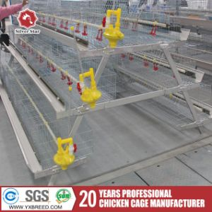 High Broiler Rate Chicken Cages for Poultry Farm Building pictures & photos