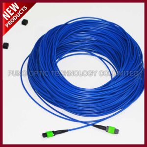 12 Cores Fiber Optic Armoured Singlemode MPO to MPO Patch Cables pictures & photos
