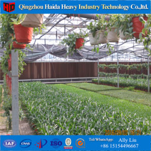 China Professional Multi-Span Agricultural Greenhouse pictures & photos