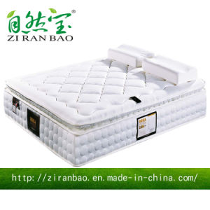 High Class Comfortable Fabric Memory Foam Spring Hotel Mattress (ZRB-803)