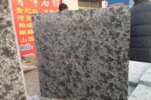Exported China Leopard Skin Granite, Competitive Price Polished Customized Size Sotnes Tiles for Countertop/Vanity Top/Stair pictures & photos