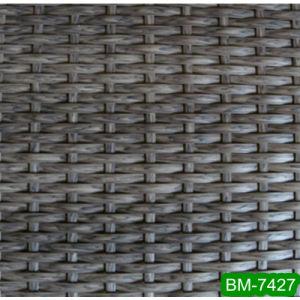 Beautiful Plastic Weaving Imitation Fiber (BM-7427)