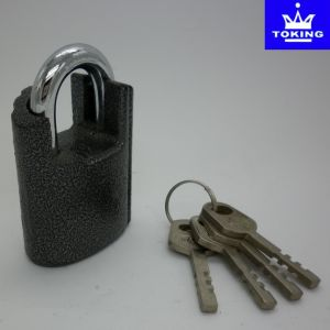 Shackle Protected Iron Padlock with Vane Keys (1313) pictures & photos